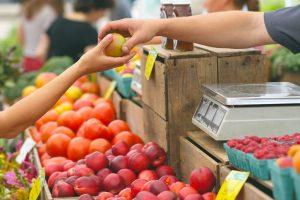 Dieta sana y ecológica con Girosalut