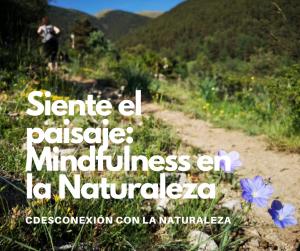 SIENTE EL PAISAJE: MINDFULNESS EN PLENA NATURALEZA