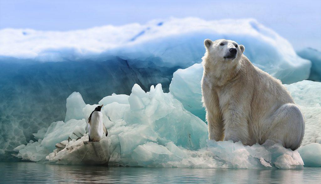 cambio climático.jpg