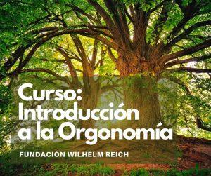 CURSO: INTRODUCCIÓN A LA ORGONOMÍA. DEL 8 AL 9 DE MAYO