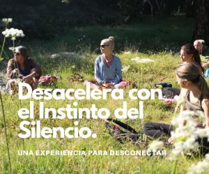 DESACELERA CON EL INSTINTO DEL SILENCIO